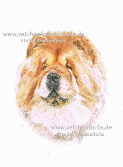 Aquarell eines Chow-Chows